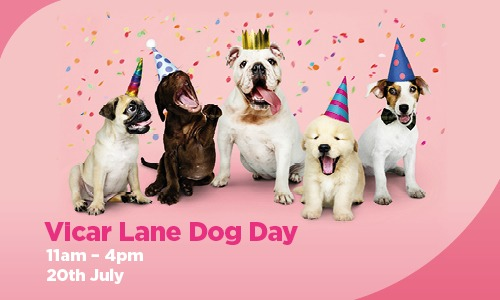 Strut your mutt at our doggy day!